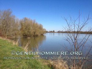 La loire - The Loire river
