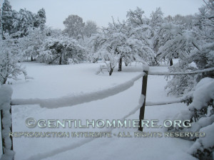 Un hiver exceptionnel ! An exceptional winter !
