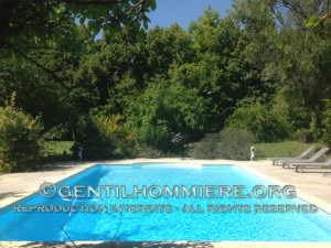 La piscine - The swimming pool